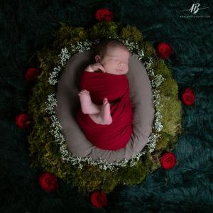 photographe-bebe-mandala