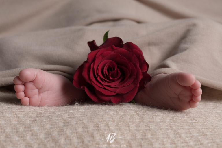 Laïa – photo de naissance en normandie